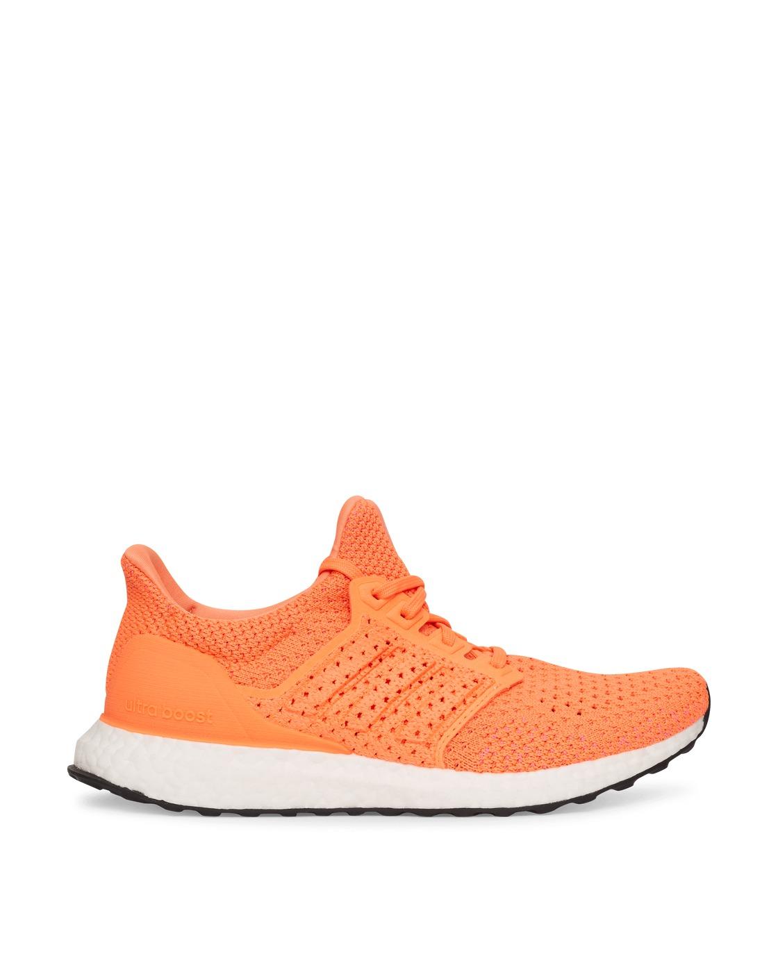 Adidas Originals Ultraboost Clima Dna Sneakers Screaming Orange
