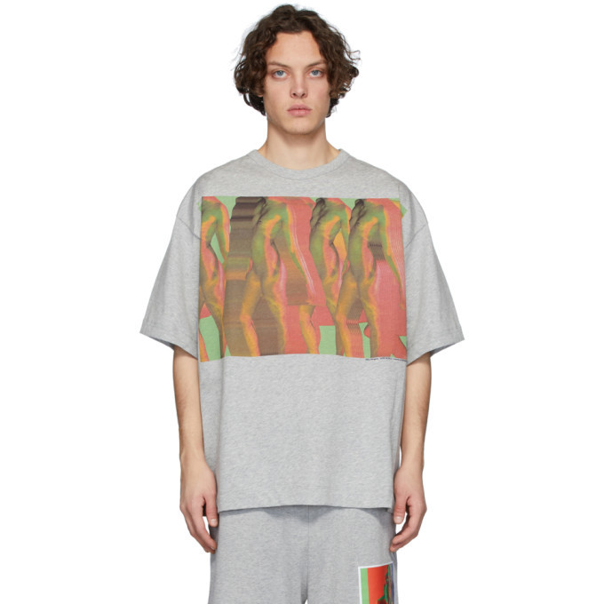 Photo: Dries Van Noten SSENSE Exclusive Grey Mika Ninagawa Edition Haky T-Shirt