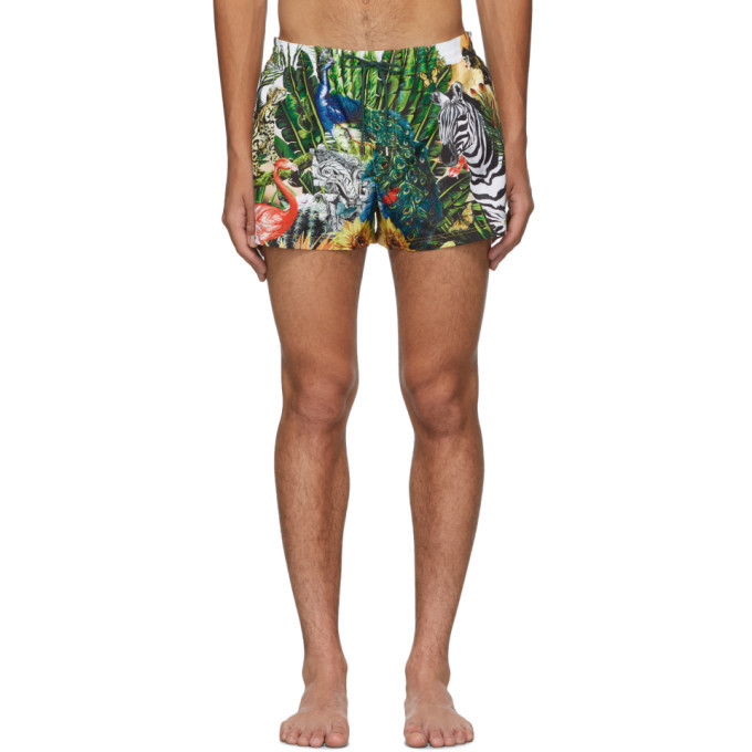 Photo: Dolce and Gabbana Multicolor Giardino 2 Swim Shorts