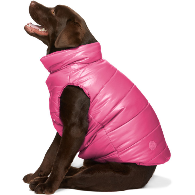 Photo: Moncler Genius Pink Poldo Dog Couture Edition Insulated Jacket