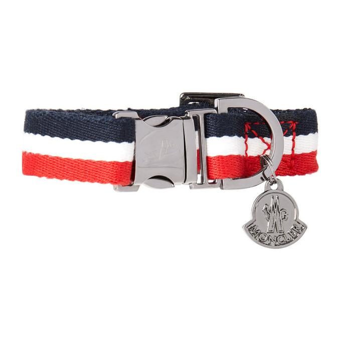 Photo: Moncler Genius Multicolor Poldo Dog Couture Edition Striped Collar