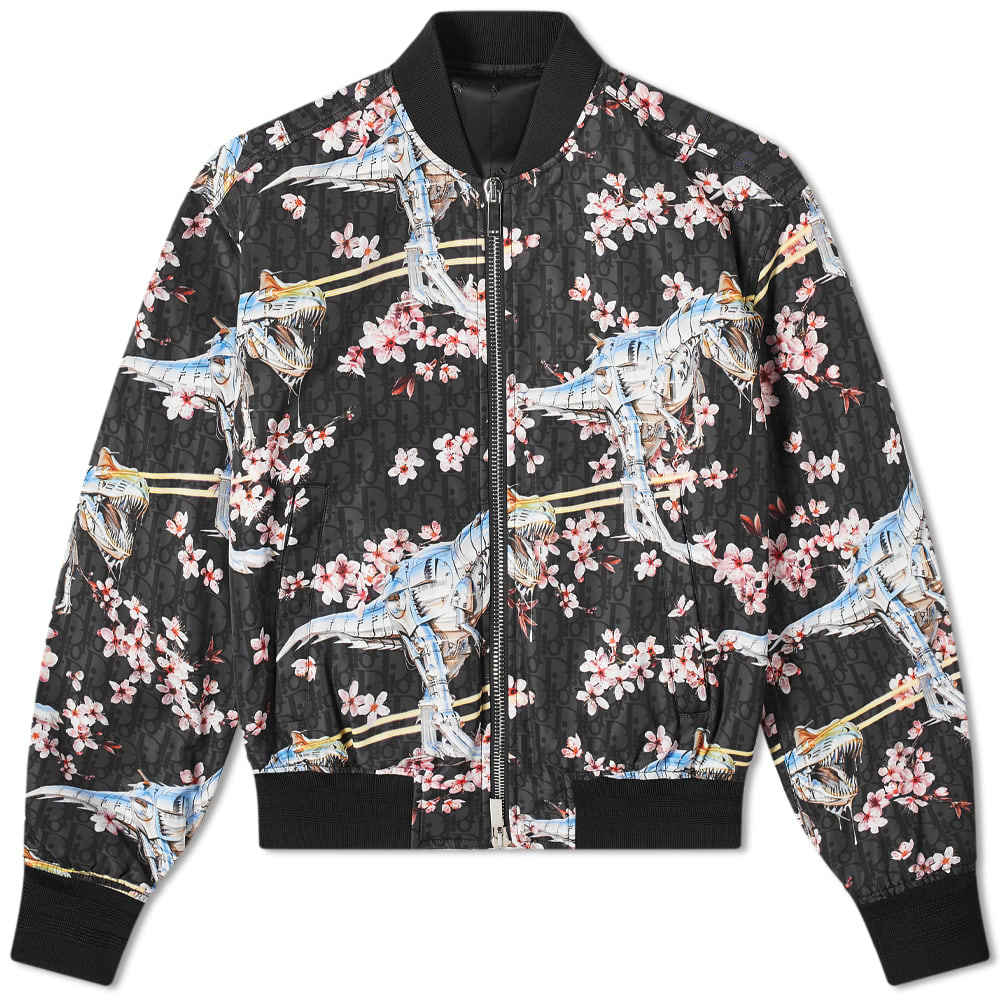 Photo: Dior Homme T-Rex Bomber Jacket
