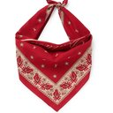 RRL - Robbin Printed Cotton-Voile Bandana - Red