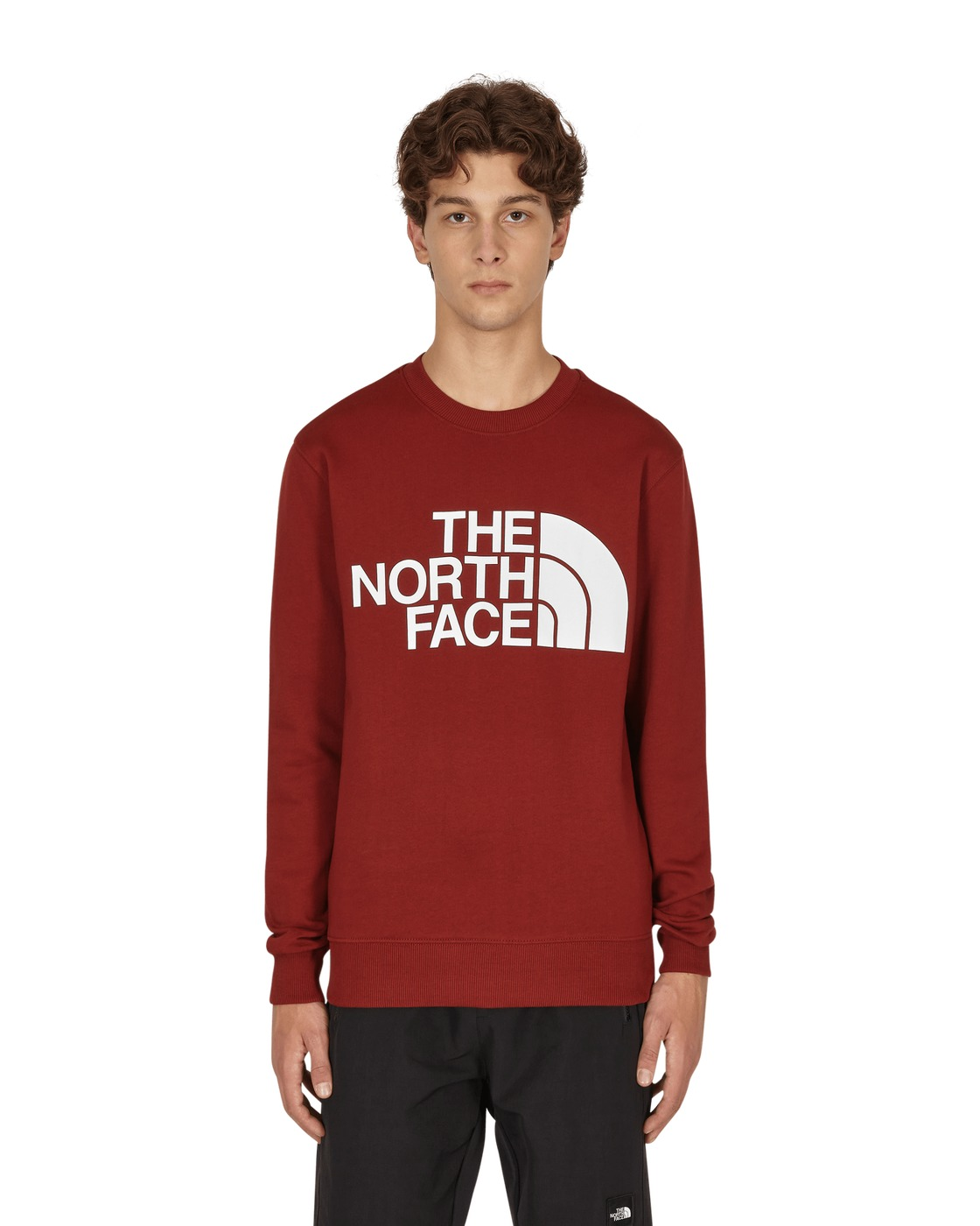 Photo: The North Face Standard Crewneck Sweatshirt Brick House Red