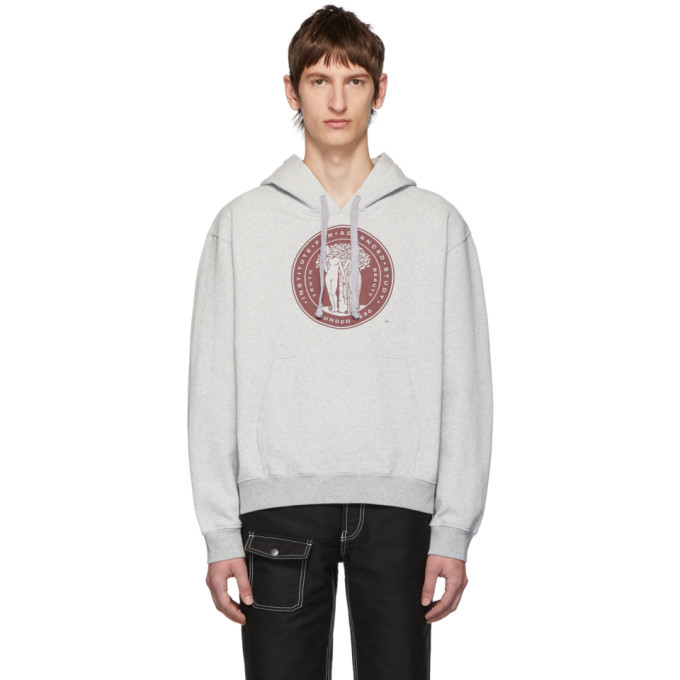 Photo: Phipps Grey Institute For Advanced Study Hoodie