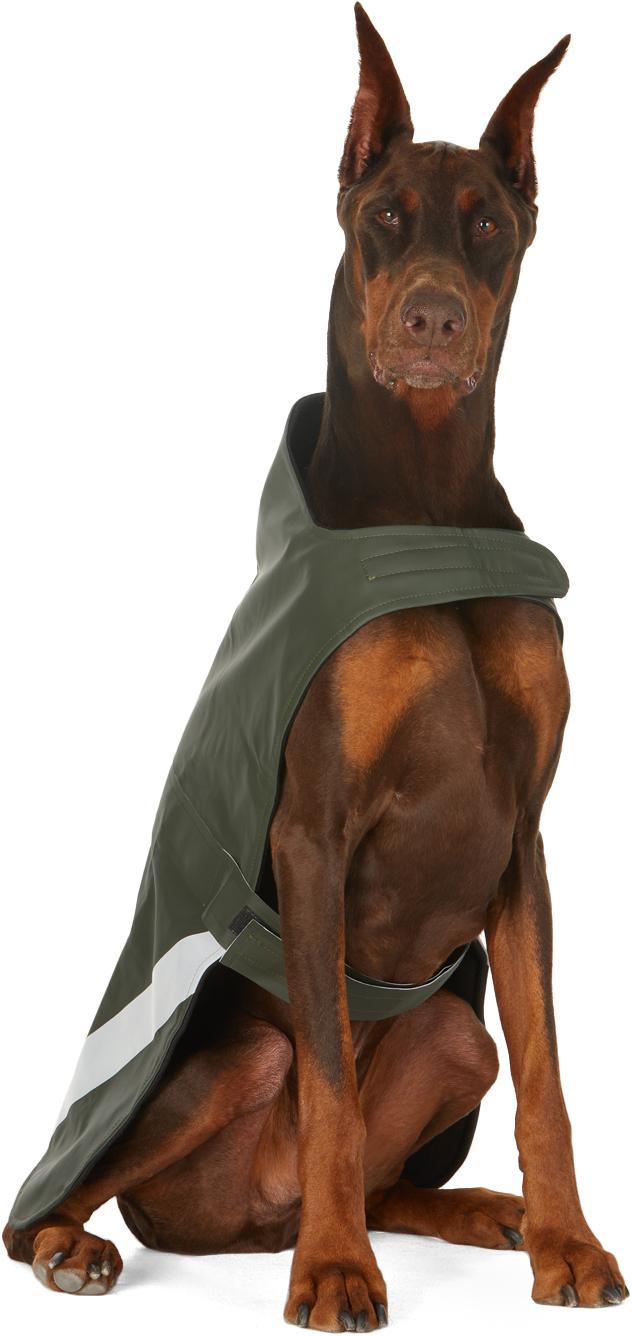 Photo: Stutterheim SSENSE Exclusive Khaki Lightweight Dog Raincoat