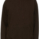 EDEN power corp Brown Recycled Cotton Star Hoodie