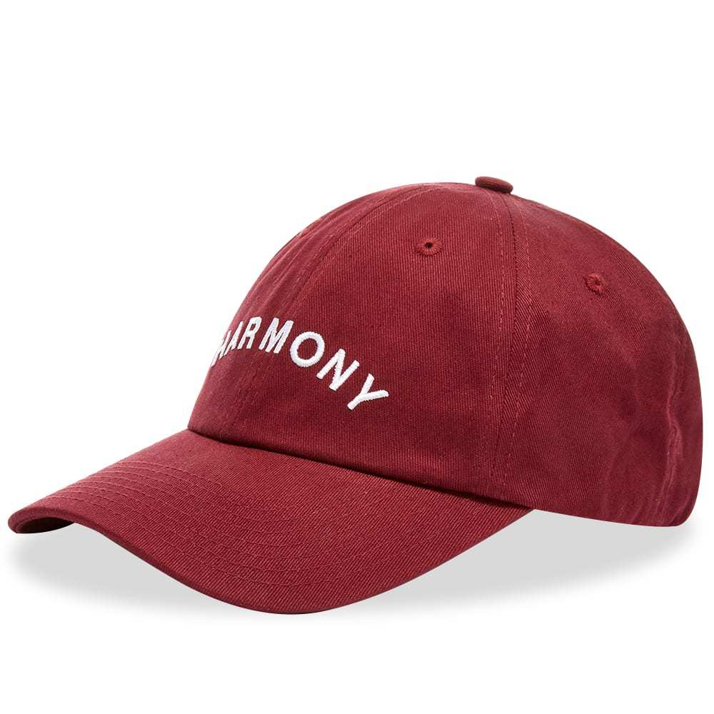 Photo: Harmony Ari Logo Cap